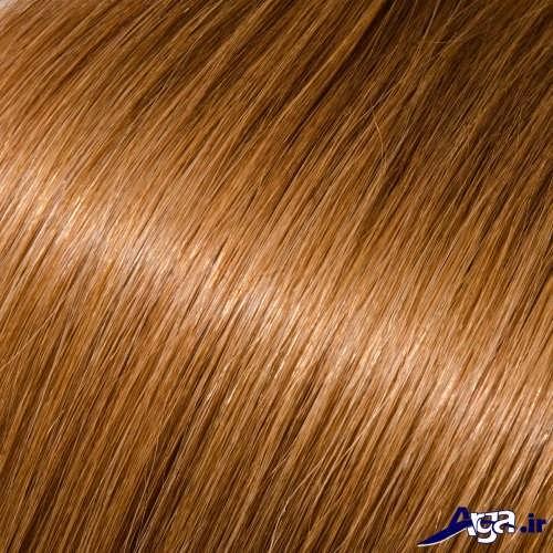 رنگ مو بیسکویتی با فرمول های ترکیبی مختلف