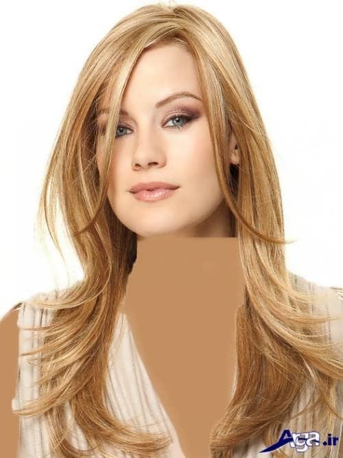 رنگ مو بیسکویتی روشن