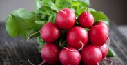 radishes-properties