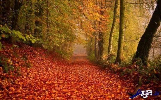 عکس های زیبای پاییزی و رمانتیک