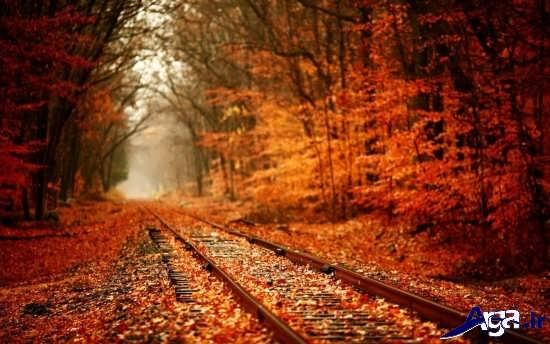 تصاویر زیبا و جذاب پاییزی