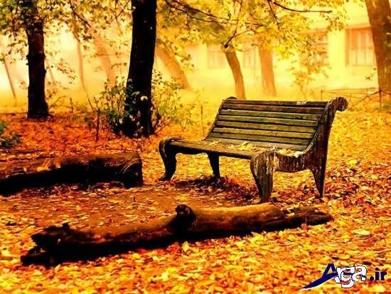 جدیدترین تصاویر زیبا و جذاب پاییزی