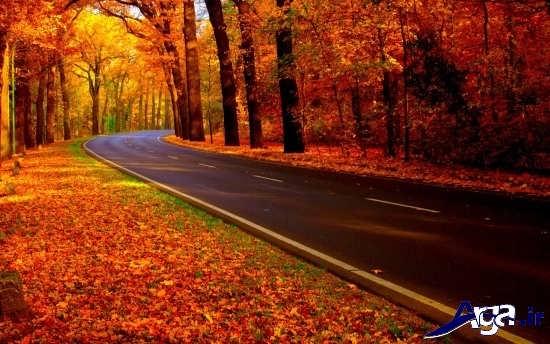 عکس های زیبا و جذاب از جاده های پاییزی