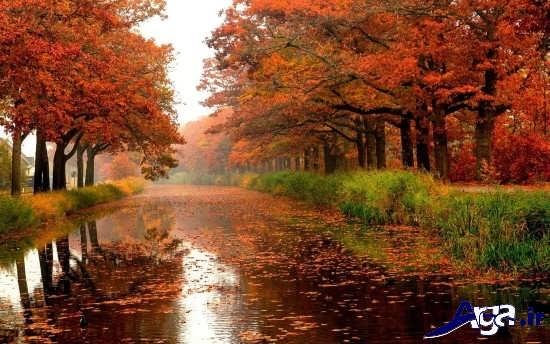 انواع عکس های زیبا و جذاب از پاییز