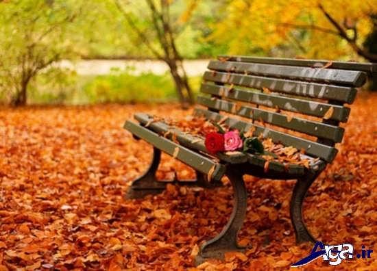 زیباترین تصاویر رمانتیک از پاییز