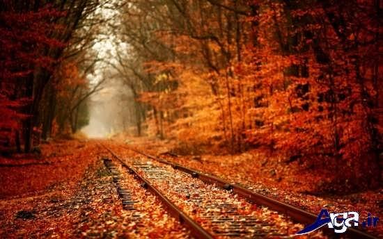 عکس های زیبا و جذاب پاییزی