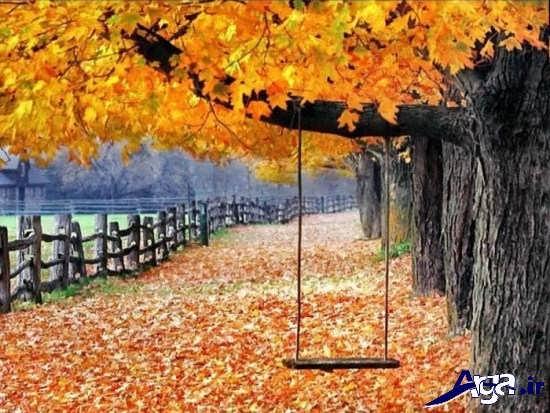 انواع عکس های پاییزی زیبا