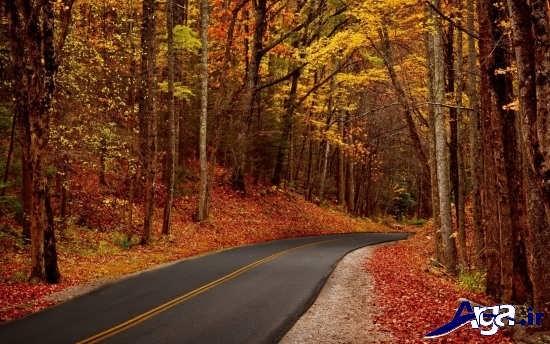 تصاویر زیبای پاییزی