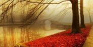 عکس های زیبا و عاشقانه پاییزی