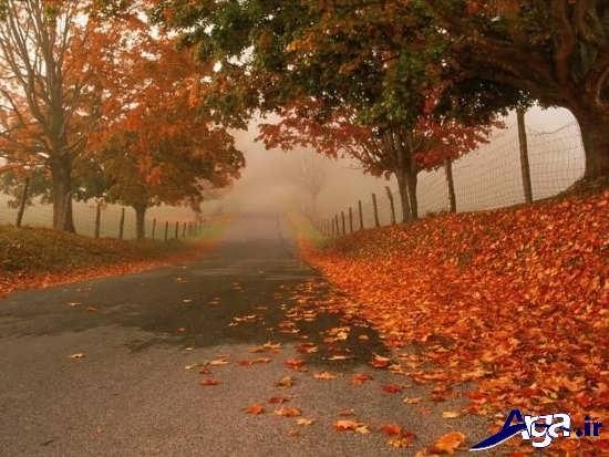تصاویر زیبا و جذاب فصل پاییز