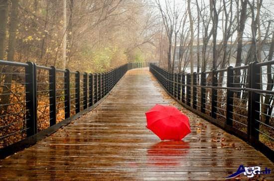 عکس های زیبای باران در فصل پاییز
