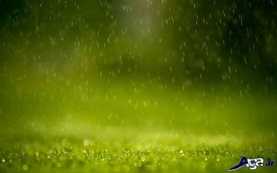 انواع عکس های زیبای طبیعت بارانی