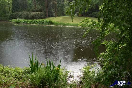 عکس های زیبای بارانی