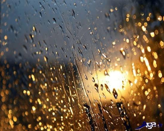 عکس های زیبا و جذاب باران
