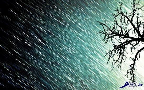 عکس های زیبا و جذاب طبیعت بارانی