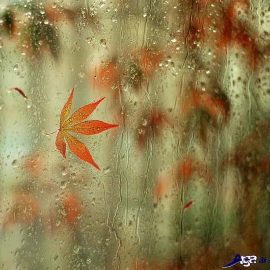 انواع عکس های زیبا و جذاب باران پاییزی