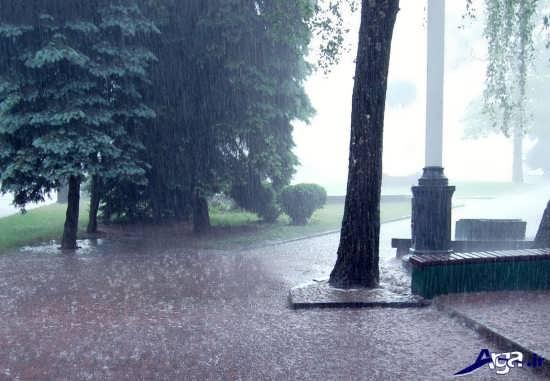 انواع عکس های طبیعت بارانی بسیار زیبا