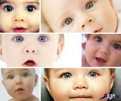 رنگی شدن چشم جنین