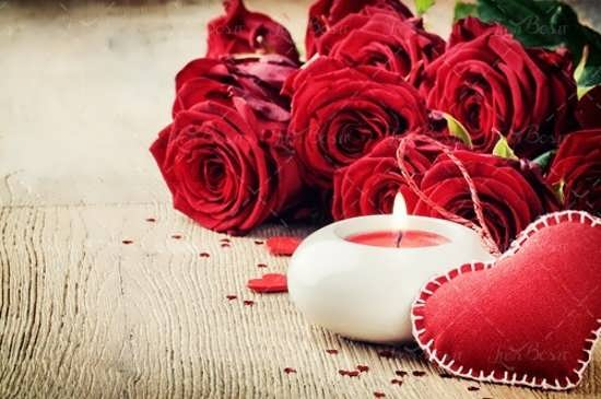 عکس گل رز قرمز