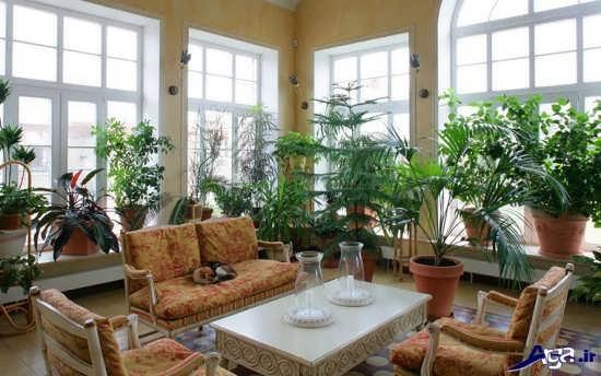 تزیین خانه با گلدان های گل