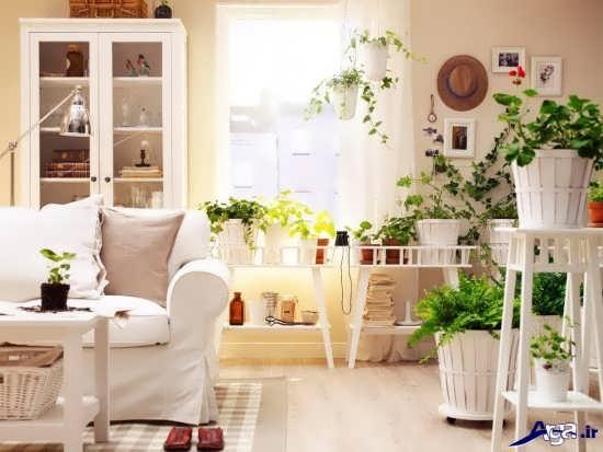 تزیین خانه با گلدان گل طبیعی