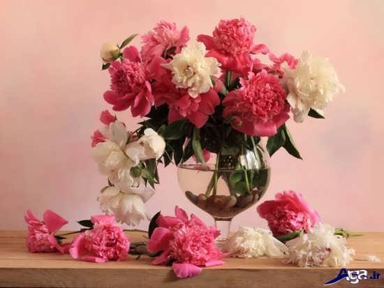 تزیین خانه با گل های طبیعی