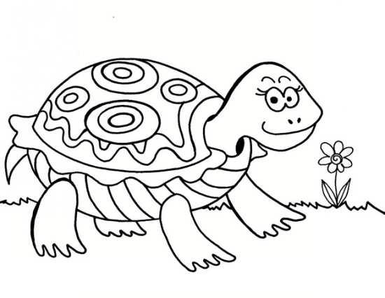 نقاشی لاک پشت برای رنگ آمیزی کودکان