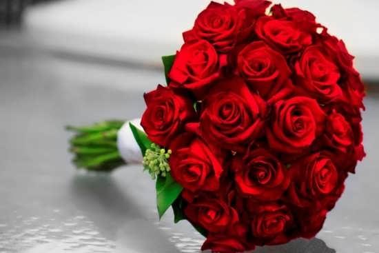 تصاویر گل های زیبا و جذاب