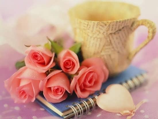 گل های زیبا و عاشقانه برای پروفایل