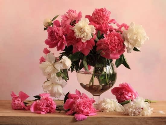 عکس گل های زیبا و جذاب