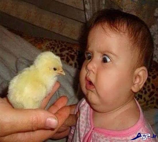 عکس بسیار جالب و خنده دار