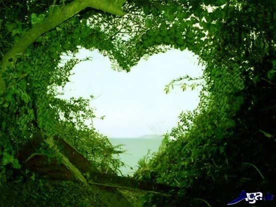 منظره های عاشقانه طبیعت
