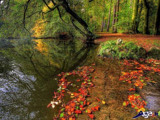 تصاویر عاشقانه از طبیعت زیبا