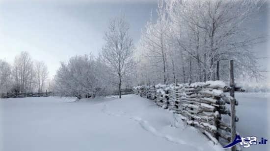 عکس زیبا و جذاب فصل زمستان