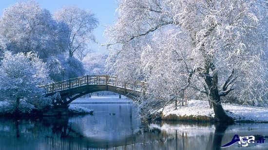 تصاویر زیبای فصل زمستان