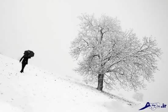 تصاویر زیبای زمستان