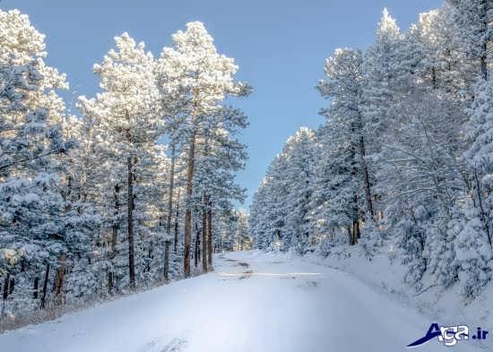 عکس های زیبای برفی