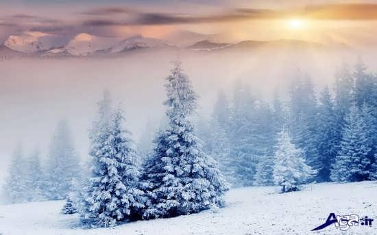 عکس های زیبای مناظر برفی