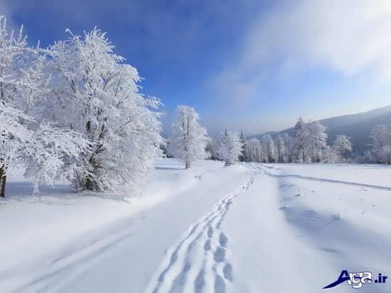 مناظر زیبا و جذاب برفی