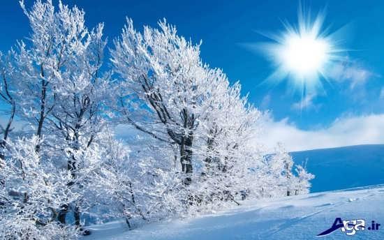 تصاویر بسیار زیبای برفی