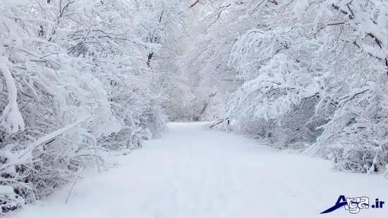 تصاویر زیبا و جذاب فصل زمستان