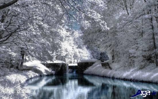 عکس مناظر برفی