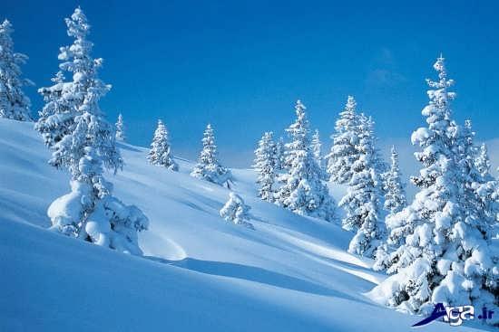 مناظر زیبای زمستان