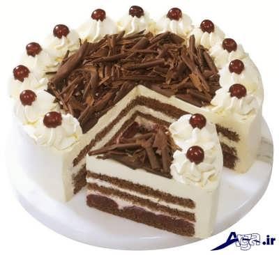 تزیین زیبا و شیک کیک اسفنجی
