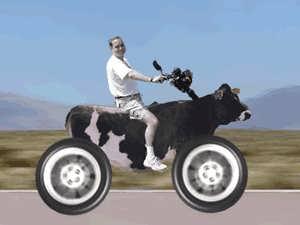 گیف خنده دار موتور سواری