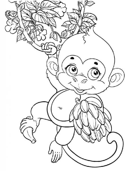 نقاشی های میمون برای رنگ آمیزی کردن بچه ها