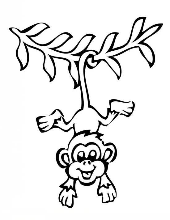 نقاشی های زیبا از میمون بازیگوش