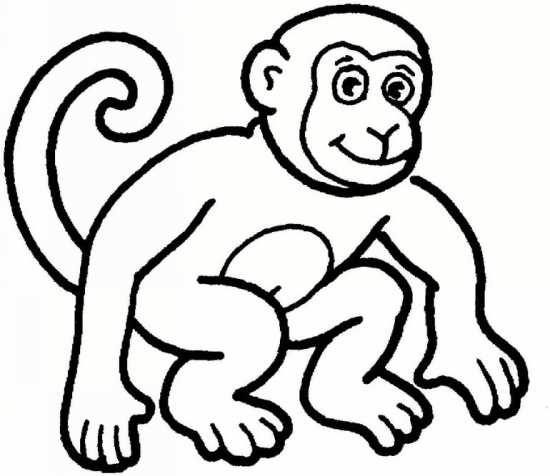 نقاشی میمون های بازیگوش