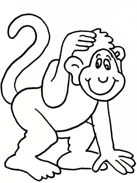 نقاشی های میمون با طرح های جدید