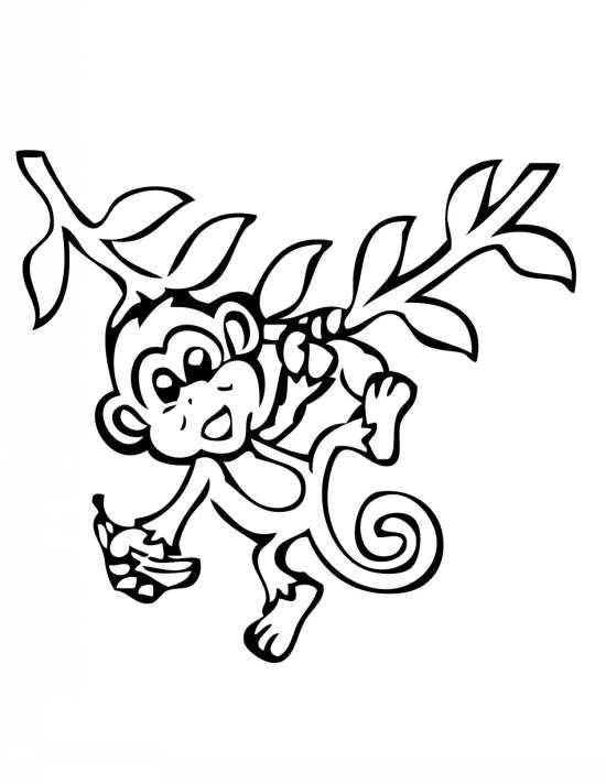 انواع نقاشی های زیبا و متفاوت میمون